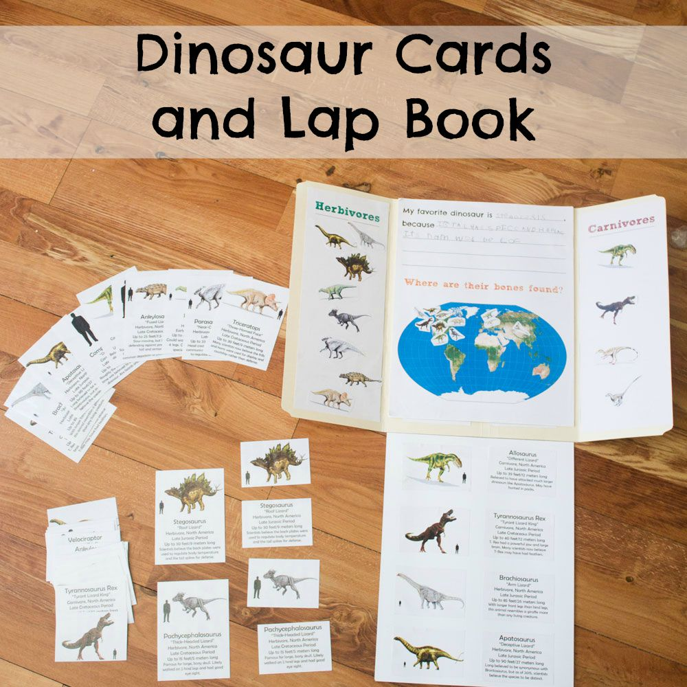 hight resolution of Dinosaur Cards and Lap Book - ResearchParent.com