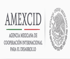 41 mexican govt