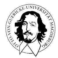 University of Magdeburg Scholarships 2017 for