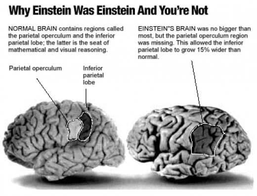 What Made Sir Albert Einstein a True Genius in Reality