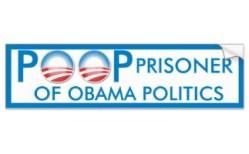 prisonnier_de_dunette_de_la_politique_dobama_autocollant_de_voiture-rc1ece7d7d1384e8aaad8ec353efffb1b_v9wht_8byvr_324