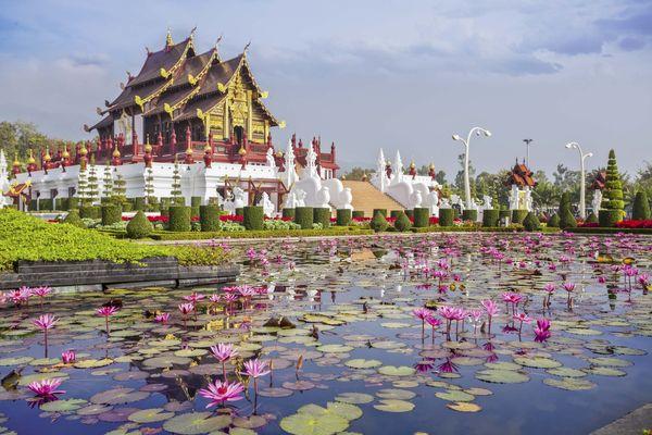 L'étang du lotus au pavillon royal de Bangkok