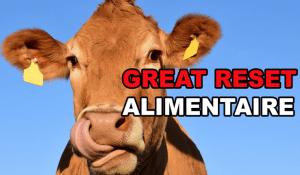 Great Reset alimentaire – Vers un changement de modèle agricole