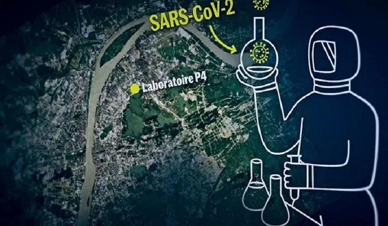 Sars-Cov-2, le virus de laboratoire a gain de fonction, la stratégie a échoué