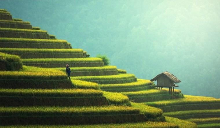 Chine – La Grande Réinitialisation et le Pacte vert n'ont pas de base solide