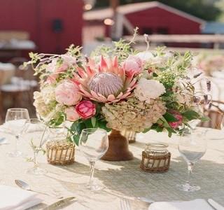 Design Idea King Protea resendiz Brothers Wedding