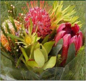 Protea Picushion bouquet resendiz Brothers