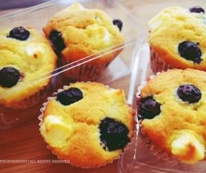 resepi-muffin-blueberry-dengan-cream-cheese