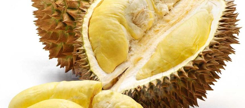 7 Jenis Durian Populer di Indonesia