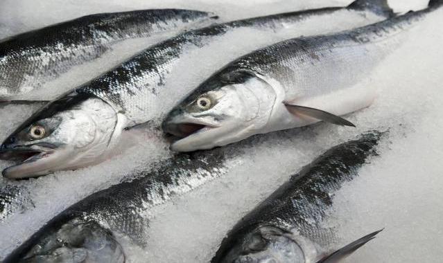 Tips Memilih, Membersihkan, Dan Memotong Ikan