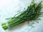 Mengenal, Memilih, dan Mengolah Bunga Bawang Prei