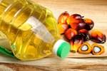 Kenali Bedanya, Minyak Goreng Biasa vs Minyak Zaitun