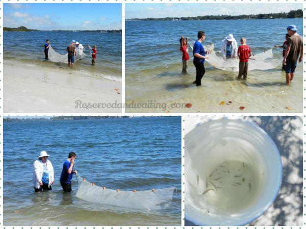 netfishing