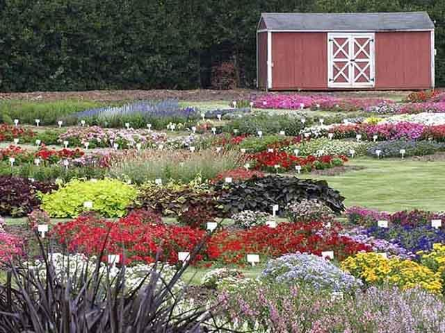 JC Raulston Arboretum Raleigh NC