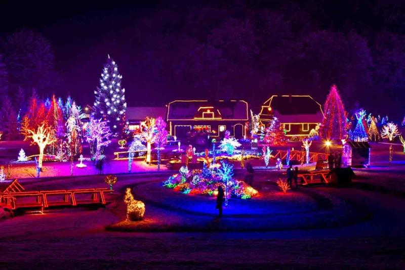 Limo Holiday Lights Tour Raleigh NC