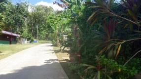 Main Rd Boca Chica