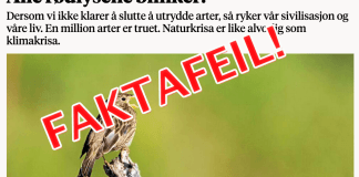 Faktafeil i Nationen