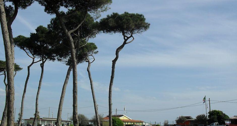 Residence Pax Ameglia Ameglia Italy