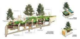 landprocess-urban-rooftop-farm-bangkok-58753-preview_low