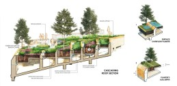 landprocess-urban-rooftop-farm-bangkok-58753-preview_low