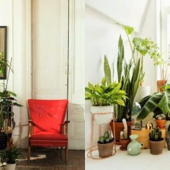 Living Room Decor With Plants Glass Display Cabinets 7 Different Way To Indoor Decoration Ideas In