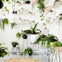 Living Room Decor With Plants The Candidate 1952 7 Different Way To Indoor Decoration Ideas In Creative Ways Display Indoors