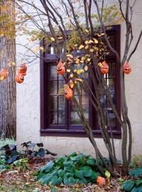 24 Indoor & Outdoor Tree Halloween Decorations Ideas