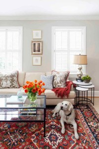 Make Your Floor Stylish By Choosing Right Carpet Design {5 ...
