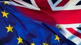 brexit international student