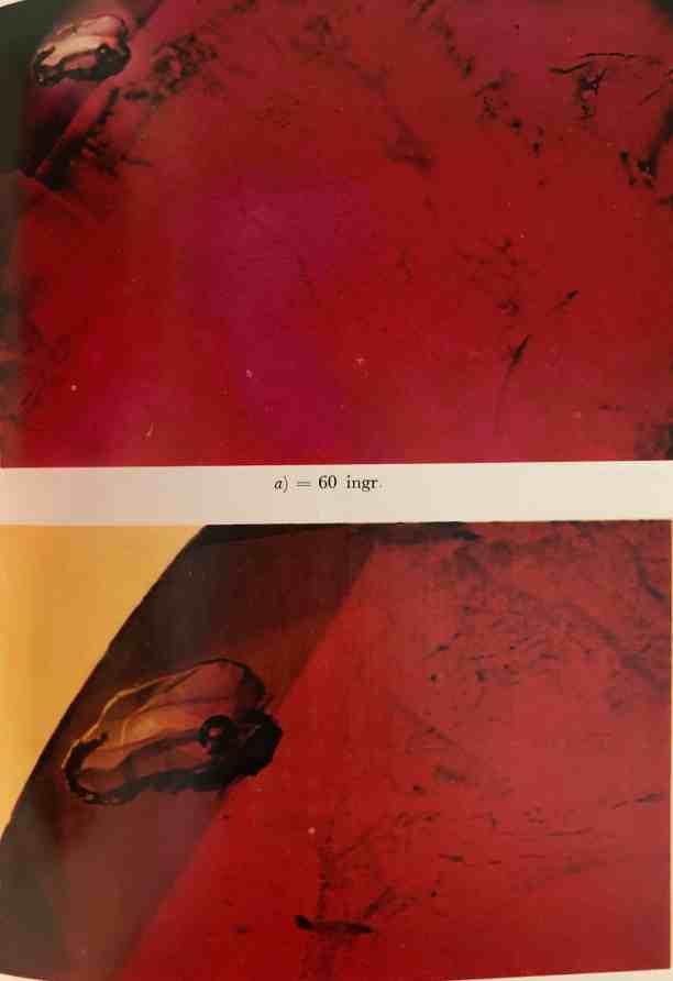 Rubino inclusioni tipo 3