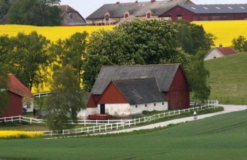 farmhouse with fields