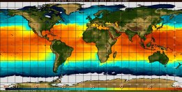 Sea surface temperature in the equatorial Pacific Ocean (above). El Niño is characterised by unusually warm temperatures in the equatorial Pacific. source: http://www.businessinsider.com.au/el-nino-likely-to-develop-2014-7