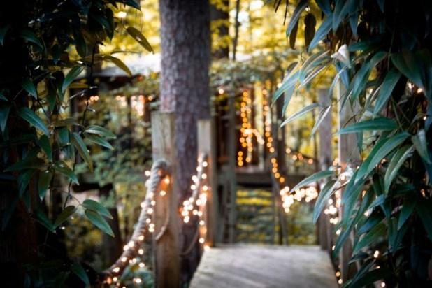 Orman İçinde Muhteşem Antik Muhteşem Ağaç Ev (3)