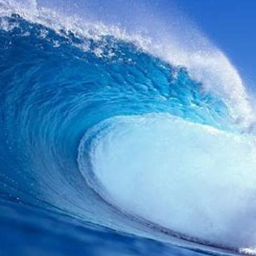 social blue wave