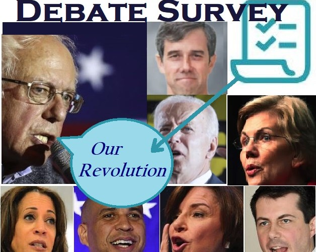 Democratic debate Bernie survey