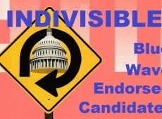 Indivisible Endorses Congressional Candidates January 2020
