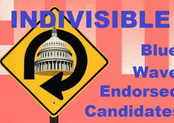 These congressional candidates endorsed by Indivisibles