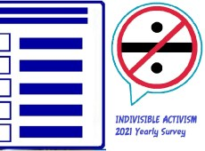 Indivisible Survey About Your Involvement In the Movement