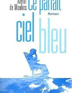 Ce Parfait Ciel Bleu De Xavier De Moulins Livre Roman Elle
