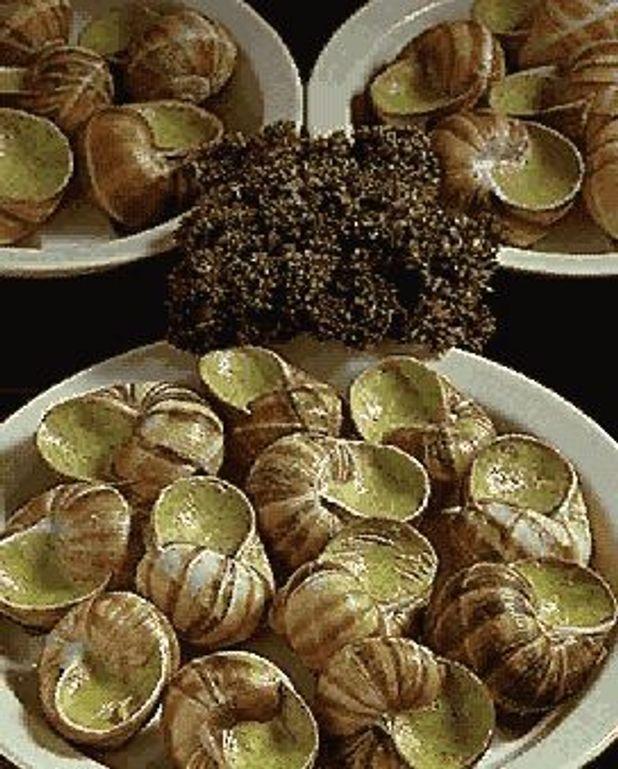 Escargots de Bourgogne pour 8 personnes  Recettes Elle  Table