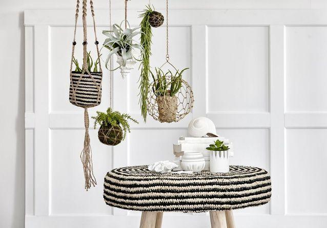decoration vegetale nos meilleures idees pour un interieur so green