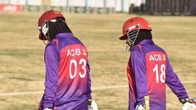 taliban bans women cricket in afghanistan: reports- India TV Hindi