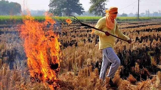 Stubble Burning, Stubble Burning Farmers, Stubble Burning Yogi Government- India TV Hindi