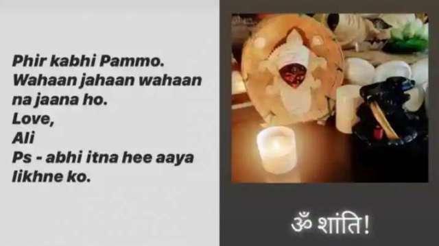 India Tv - Ali Fazal, Richa Chadha's Instagram s tories