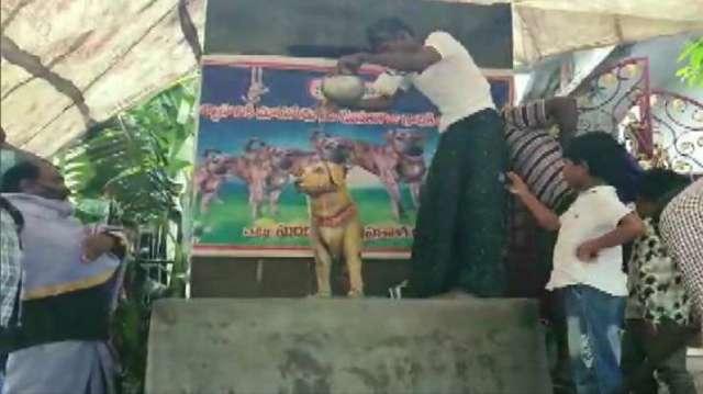 इंडिया टीवी - आंध्रा मैन ने लगाई कुत्ते की मूर्ति
