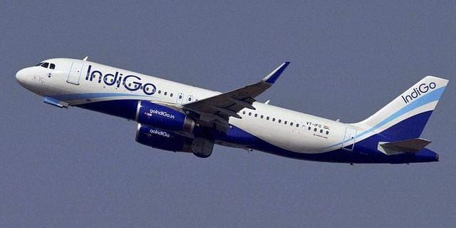 indigo airlines domestic flights