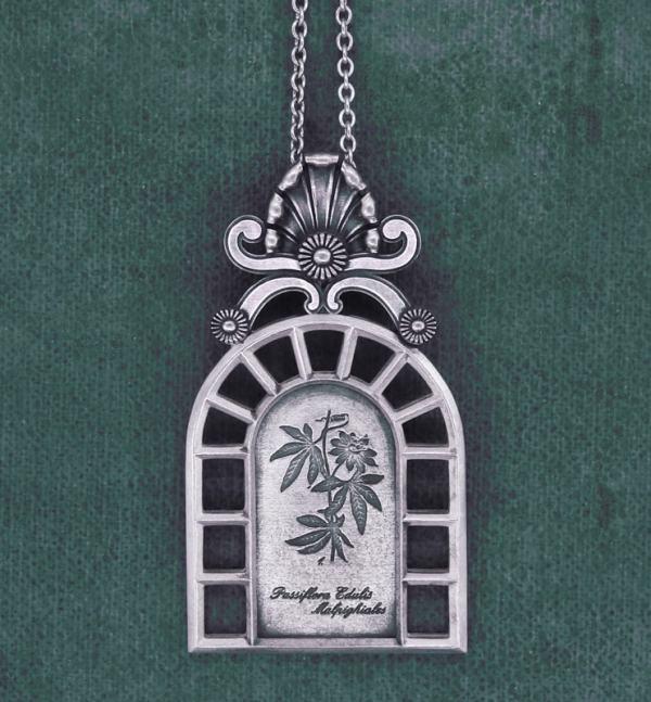 Pendentif fleur de la passion façon planche botanique ou herbier dans un cadre esprit orangerie | Res Mirum