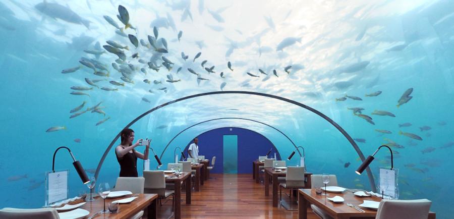 Voici 4 des restaurants les plus insolite au monde