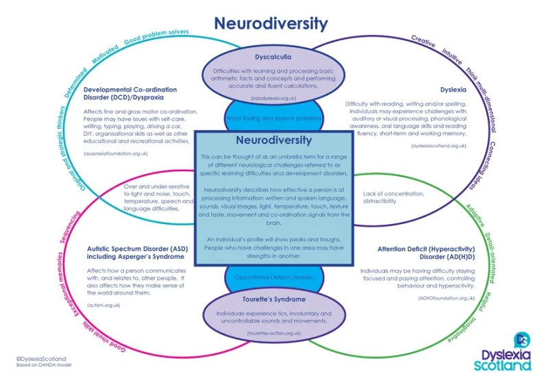 neurodevelopmental conditions falling under the umbrella term neurodiversity