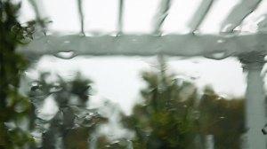 Rain-Painting-still-garden-trellis-adj